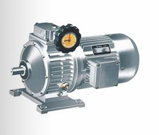 MB Series 391 Planetary Friton Mechanical Infinite Speed Reducers